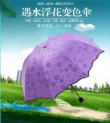 遇水开花晴雨伞